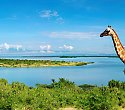 Baden in der Leisure Lodge Kenia & 7 Tage Safari - 7 Tage/6 Nächte Out of Africa Safari