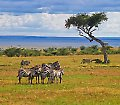 Travellers Club Kenia mit Big Five Safari